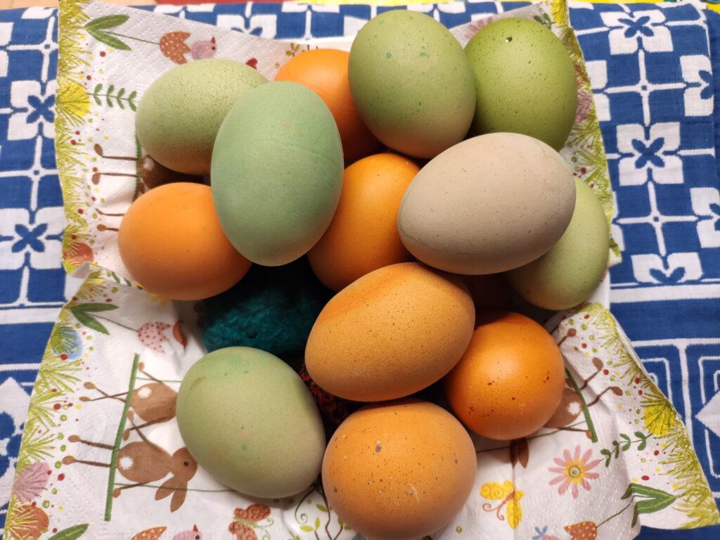 Ostereier von Landhaus-Hühnern